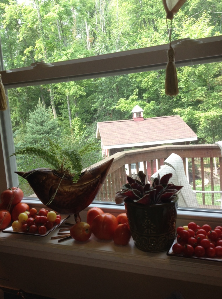 Tomatoes on my windowsill.